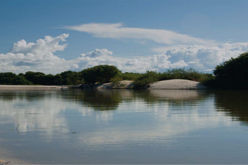 Conservación Faja Petrolífera del Orinoco
