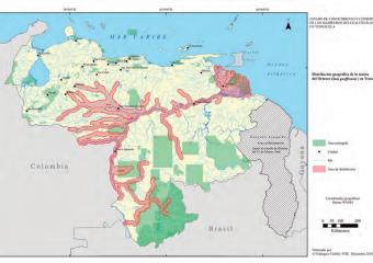 Plan de Acción para los Mamíferos Acuáticos en Venezuela